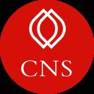 Phần mềm kế toán CNS.NET - Icon